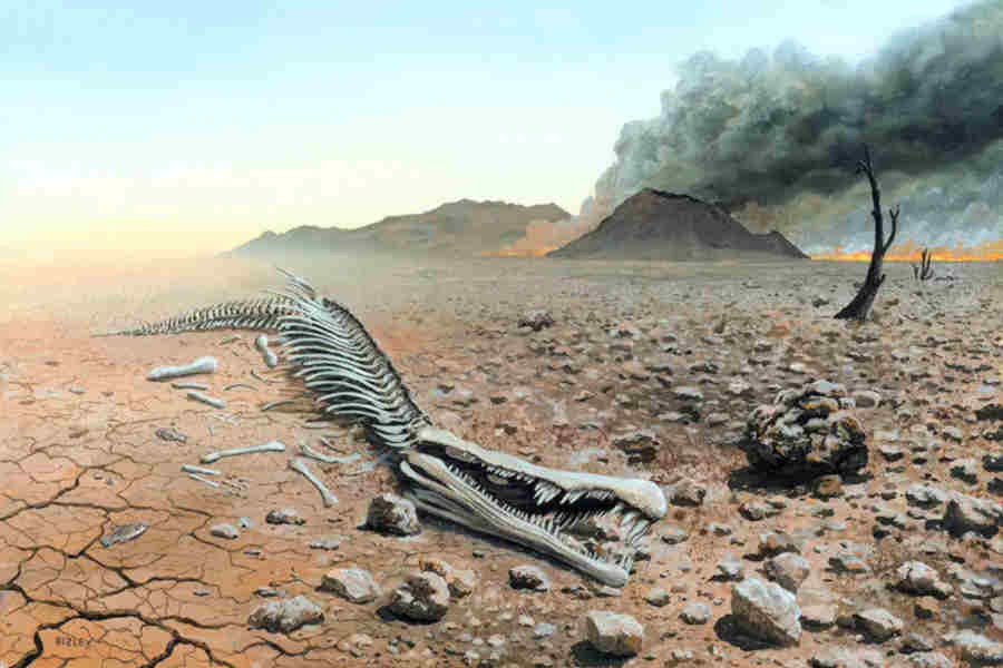 extinction-desolation image